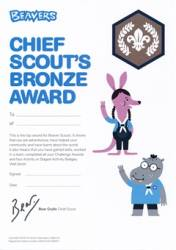 Chief Scout's Bronze Award Certificates (Pack of 10) - £4.00